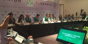 Plenaria-Verde-3-770x392